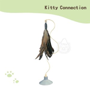 Kitty Connection聰明貓樂高-歡樂鳥