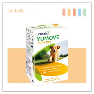 YuMOVE Active Dog 優骼服活躍犬隻(犬用食品)60錠-01